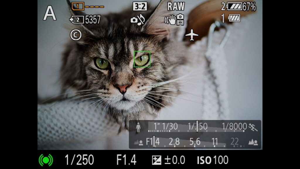 Sony A9 A7III A7RII EyeAF On Off Human Animal Toggel via Fn Menu Customizing